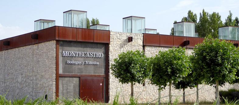 y Viñedos Montecastro