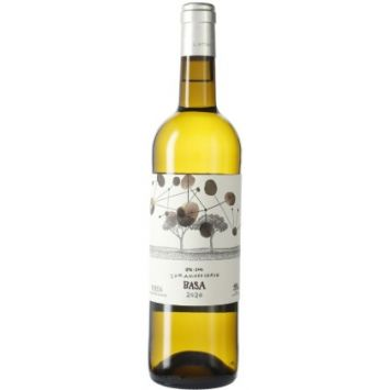 españa castilla leon rueda telmo rodriguez vino blanco basa verdejo