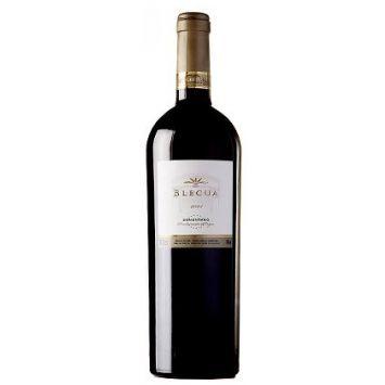 blecua vino tinto viñas del vero somontano