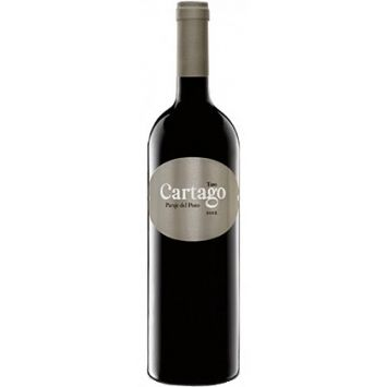 cartago paraje del pozo vino tinto toro maurodos san roman