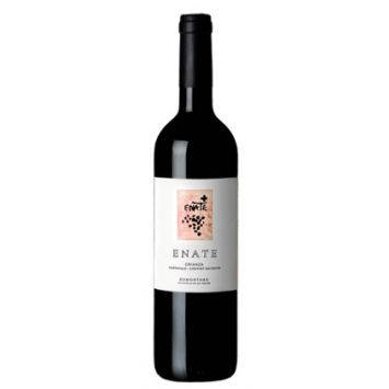 Enate Crianza 2013 Comprar Vino Bodegas Enate