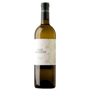 José Pariente Sauvignon Blanc vino blanco Rueda José Pariente