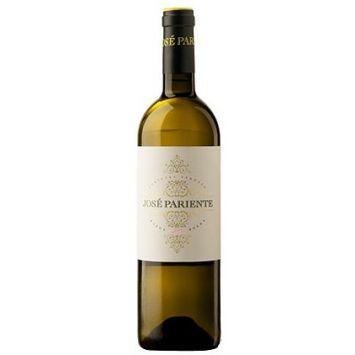 Vino Blanco José Pariente Varietal Verdejo Rueda