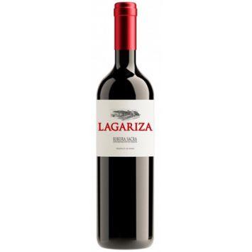 Lagariza 2017 vino tinto ribeira sacra Bodegas Finca Míllara