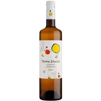 Terra Mundi vino blanco Rías Baixas Bodegas Vinigalicia