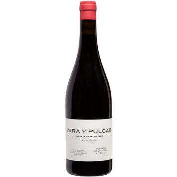Vara y Pulgar vino tinto de la Tierra de Cádiz Compañía de  Vinos Atlánticos