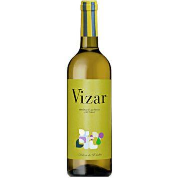 vizar verdejo ecologico vino blanco castilla y leon